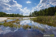 Hike the two mile, kid-friendly Mile Rock Trail and Forest Trail loop at Arabia Mountain near Atlanta through vast rock fields and to a glassy, serene lake.