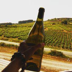Nuestra primera botella de godello. #felices #vine #wein #vinos #wine #vino #vinho #vin #ワイン #wino #wijn #Вино #红葡萄酒  #losadavinos #dobierzo #godellos #whites #winesfromspain #losada #exportquality #china #qualitywine  #wineproducers #Bierzo #sexywine #wineporn #wineoclock #birdwine (en Losada Vinos de Finca)