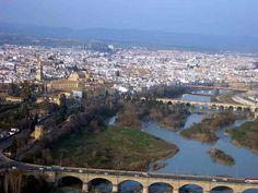 Sotos de la Albolafia y Puentes