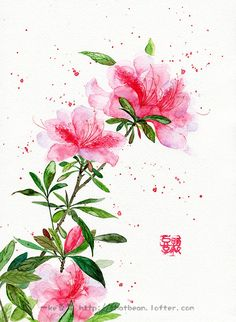 水彩插画——杜鹃 Watercolor And Ink, Watercolor Flowers, Watercolor Paintings, Background Drawing, Plant Drawing, China Art, Botanical Prints, Japanese Art, Flower Art