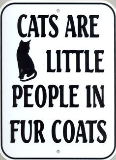 At least, that's what they seem to think! :-) ♡... Re-pin by StoneArtUSA.com ~ affordable custom pet memorials for everyone.