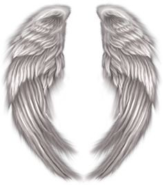 Image from http://images.vectorhq.com/images/previews/3f0/angel-wings-psd-438642.png.