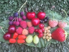 Cherry, Fruit, Vegetables, Garden, Food, Garten, Lawn And Garden, Essen, Vegetable Recipes