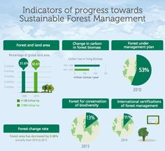 Twitter Sustainable Forestry, Environmental Education, Sustainability, Infographic, Management, How To Plan, Twitter, Climate Change, Infographics
