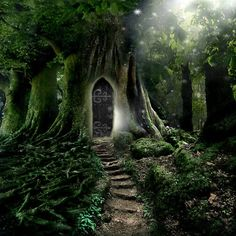 """Doorway to Lothlorien"" Fine Art Print by AngelaBarnett"