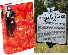 As Black History Month draws to a close, Sandrarose.com recognizes a woman whose unique cancer cells pioneered many medical and science breakthroughs. The descendant of African slaves and their masters, Henrietta Lacks was born in 1920 in Roanoke, Virginia. She grew up dirt poor on a tobacco farm in Clover, Virginia after her mother died...  Click here to read more