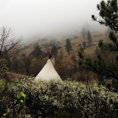 Misty morning outside the teepee