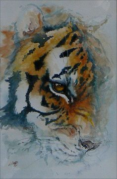 Leslie D McKenzie Watercolor. Love the lost and found edges. Watercolor Tiger, Watercolor Animals, Watercolor Paintings, Watercolours, Big Cats Art, Cat Art, Animal Sketches, Animal Drawings, Painting Inspiration