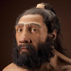 Image of male Neanderthal reconstruction based on Shanidar 1 by John Gurche