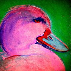 Funky Pinky Ducky Art Print. This colorful pink duck seems pretty happy and pleased with himself :)) Whimsical colorful funky wildlife & floral pop art fun paintings by Sue Jacobi - Sudha Jacobi, on www.sue-j.artistwebsites.com and http://fineartamerica.com/profiles/sue-j.html