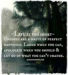 ~Life is too short~ Grudges are a waste of perfect happiness. Laugh when you can, apologize when you should & let go of what you can't change....