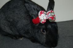 Bunny Bow Christmas Colors with Sequins and Snowflake by VeganBuns