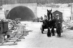 Horses being used in the construction of the Queensway Tunnel, Birkenhead, 1931 Liverpool Life, Liverpool History, Old Pictures, Old Photos, Vintage Photos, Horse Transport, Black And White Building, Portland Garden, Local History
