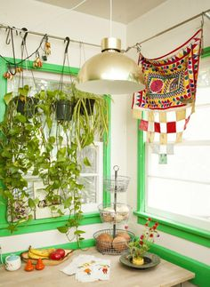 It's a plant curtain!
