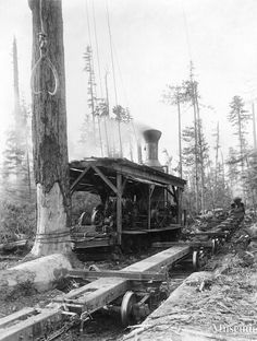1917 Logging ..... Steam donkey near Menzie's Bay Willamette 12x14 high speed Duplex yarder and loader, known at the Bloedel, Stewart and Welch operation as the Riley Combination Yarder and Loader. 65-ton Shay locomotive in background.