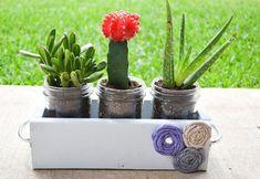Make a planter for your jar garden.