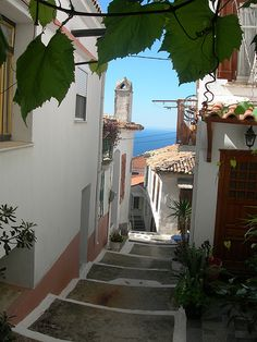 Samos Island, Greece Yup; been there walked that