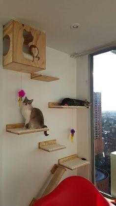 Espacios para gatos Cat design Gatificando® Pensamos como gatos® Gatificando.com