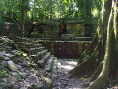 Palenque is considered to be the most beautifully conceived of the Mayan city-states and one of the loveliest archaeological sites in the world.