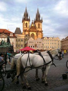 39 Ideas De Viajes Viajes Praga En Dos Dias Que Ver En Praga