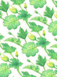catherinepapeillustration: Courgette leaves pattern Ink and brusho dyes Doodle Patterns, Print Patterns, Illustration Courses, Leaf Art, Freelance Illustrator, Surface Pattern Design, Leaf Prints, Plant Leaves, Green Leaves