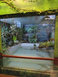 Enclosure to play with fish
