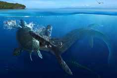 Fight underwater - monsters, picture, paleontology, nice, underwater, other, animals, dinosaur, ocean, amazing, blue, monster, reptiles, drawing, prehistoric, cool, awesome, animal, great, reptile, dinosaurs, sea, prehistory