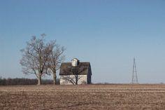 Tree shadow on Iowa barn