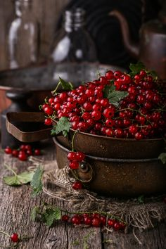 Red currant by Anastasia Zourabova - Photo 167172531 - Fruit Photography, Food Photography Styling, Food Styling, Fruit And Veg, Fruits And Vegetables, Fresh Fruit, Photo Fruit, Delicious Fruit, Food Pictures