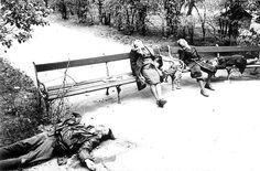 Cuerpos de una familia alemana que se suicidó en un parque de Berlín ante la llegada del Ejército Rojo