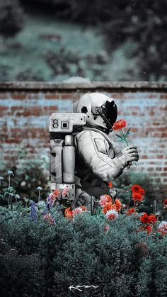 Find images and videos about flowers, wallpaper and bottoms on We Heart It - the app to get lost in what you love. Et Wallpaper, Galaxy Wallpaper, Wallpaper Backgrounds, Astronaut Wallpaper, Foto Art, Belle Photo, Cute Wallpapers, Phone Wallpapers, Aesthetic Wallpapers