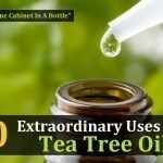 10 Extraordinary Uses For Tea Tree Oil – The Medicine Cabinet In A Bottle