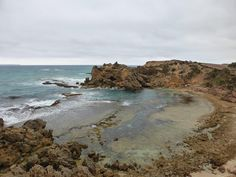 #day1 #hp_time3 It took a lot of time about 120000 years infact for #thecrags #portfairy to look like this #novemberphotoaday #visitaustralia #loves_australia #bestcountry #australia #iloveaustralia #exploringaustralia #wow_australia #amazing_australia #aussiephotos #destination_australia #australiagram #bestcountry #ausfeels #seeaustralia #australianlife #victoria #visitvictoria by suzanvasica69
