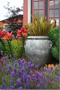 Mediterranean Garden Design - Creating a Tuscan Garden (14)purple with our grey fountain background red windows?