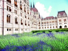 """Some destinations """"get you"""";others just get your wallet. Uncover the beauty. Unveil its secrets. Budapest is waiting. A budget destination, it is yourgateway totheEast. A side of Europe that embraces its flaws, whileaccepting its heritage. Budapest is the place to…  View Full Post"""