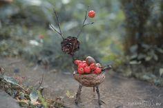 Pine cone+sticks+walnut+berries=deer