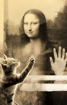 Rainy day vision by Rudolfs Kristapsons (Latvia) Real Mona Lisa, Mona Lisa Smile, Monnalisa Kids, Mona Friends, Cool Pictures, Funny Pictures, La Madone, Mona Lisa Parody, Arte Pop