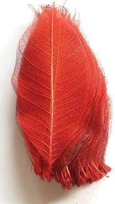 Folhas Esqueleto - Vermelho ***Disponível para Venda