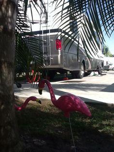 Florida RV living