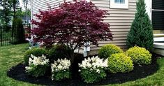 Gorgeous 30 Landscaping Front Yard Ideas