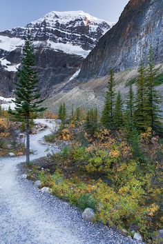 Mt. Edith Cavell, Jasper National Park, Canada ~StevenDavisPhoto on deviantART