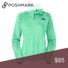 Northface NWT Osito 2 Surf Green large Brand new!  Gorgeous light green color!!  Size large.  Still has tags.  Color in stock photo is how the color looks in person. The North Face Jackets & Coats
