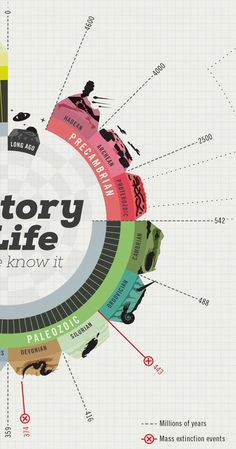 History of Life by juan David Martinez, via Behance