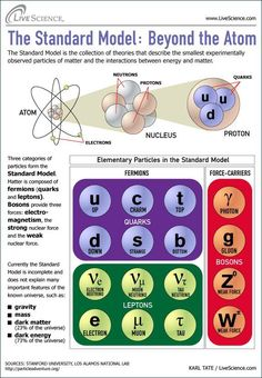 Science chemistry Atoms Infographic: Strange Quarks and Muons, Oh My! Nature's Tiniest Particles Dissected (Infographic) by Karl Tate, LiveScience Science Chemistry, Science Facts, Physical Science, Teaching Science, Science Education, Earth Science, Science And Nature, Science And Technology, Biology Facts