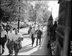 Civil servants leaving work. Cheap Lipstick, Leaving Work, Ottawa, Civilization, Ontario, Street View, Urban, History, Image