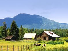 Abbott Valley Homestead  Martin City, Montana
