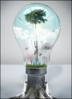 What is Climate Changes – Conscious Society Light Bulb Art, Fantasy Paintings, Light Of Life, Bright Future, Surreal Art, Magazine Art, Digital Collage, Global Warming, Photo Manipulation