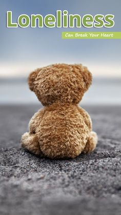 Thank God for your teddy bear that I still have. When my need to hold you tight overwhelms me, I squeeze Teddy instead. Tatty Teddy, Cute Teddy Bears, Bear Doll, I Miss You, Grief, Cute Animals, In This Moment, Toys, Photography