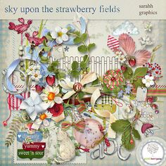Available for $2 only until 11:59 p.m. EDT Sunday, May 4, 2014! sky upon the strawberry fields