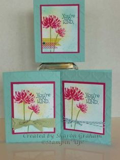 Too Kind Trio by Sharon Graham - Cards and Paper Crafts at Splitcoaststampers